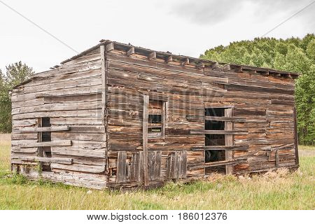 Old cabin or outbuilding in a rural area of Montana where an attempt has been made to keep people and large animals out