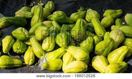Pile of chayote on top of blue tarpaulin photo taken in Bogor traditional market java