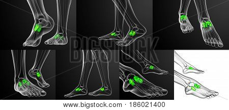 3D Rendering Medical Illustration Of The Midfoot Bone