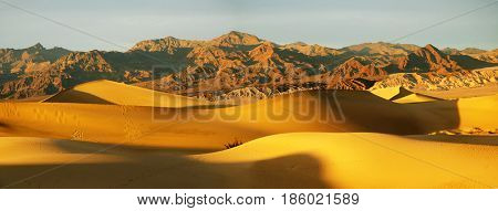 Panorama of Death Valley sand dunes California near Mesquite flat at dawn