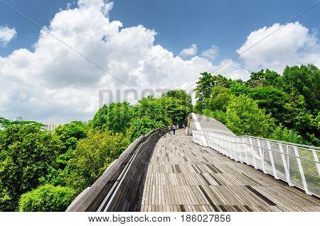 Beautiful View Of Amazing Bridge Imitating A Wave, Singapore
