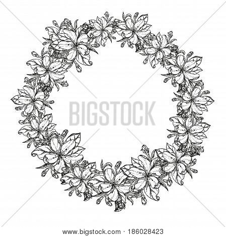 wreath of flowers of apple. Vector illustration blooming branches cherry pear flower sakura. vector background of apple blossom