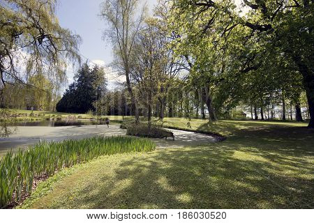 Beautiful horizontal springtime park with a lake.
