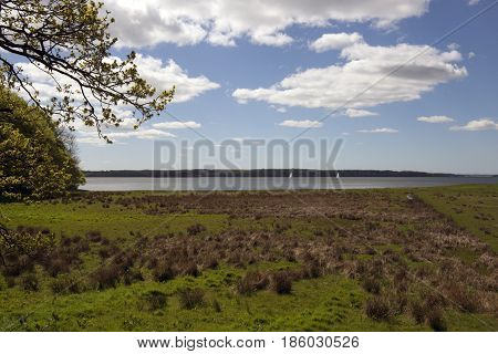 Springtime Danish coastline view from forest. Littlebelt in the bakground.