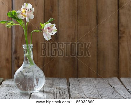 Alstroemeria in glass vessels on a dark wooden background