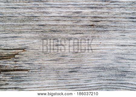 closeup of old grey wooden varnished texture background with many irregularities and scratches