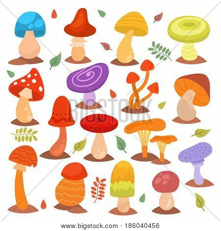 Different cartoon mushrooms isolated on white nature food design collection fungus plant vector illustration. Vvegetable fungi ingredien forest natural autumn vegetarian plant