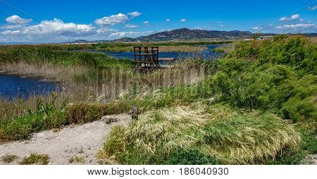 Nature and wooden viewpoint to marsh, wide angle