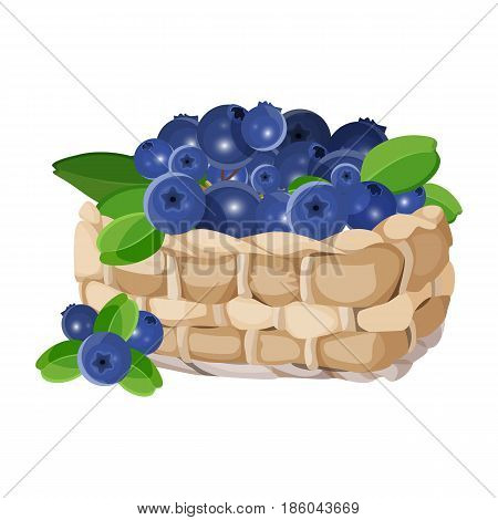 Wicker basket with blueberries realistic vector illustration isolated on white. Blue healthy berries with green leaves