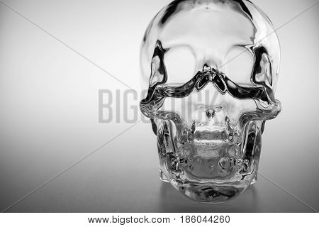 Crystal skull glass brainpan black and white detail