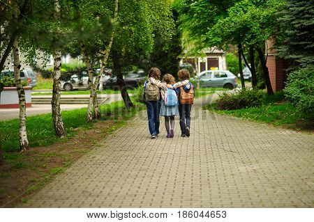 Three little school students two boys and the girl go in an embrace to school. Children's friendship. Serene spring day. View from a back.