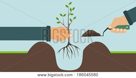 Planting a tree with roots one hand holding a tree another shovel with soil. Flat design vector illustration vector.