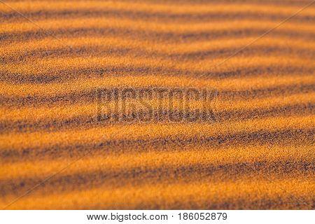 Sand dunes in Sahara desert, Morocco, Africa