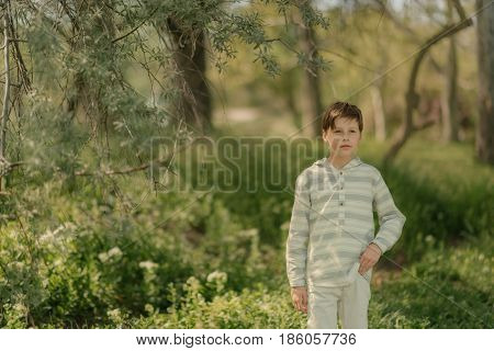 In a sunny forest a little boy in white jeans and a striped cardigan walk
