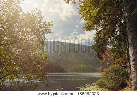 A beautiful landscape scene at the lake great arber Bavaria