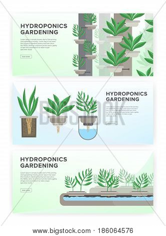 Hydroponic system, gardening technology. Collection of horizontal banners with place for text
