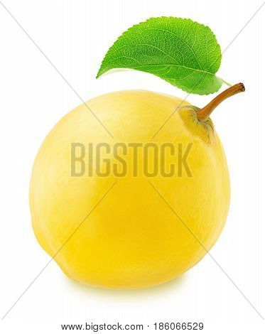 Ripe apple-quince with green leaf isolated on a white