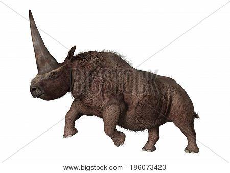 3D Rendering Elasmotherium On White