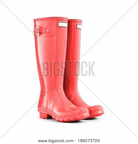 Red Rubber Boots Isolated On White Background. Rubber Shoes