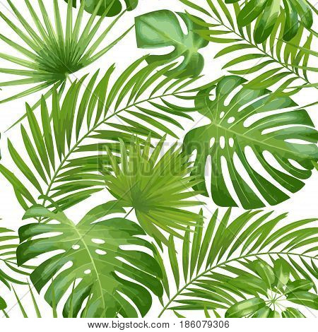 Exotic leaves, rainforest. Seamless realistic tropic leaf pattern. Vector background.