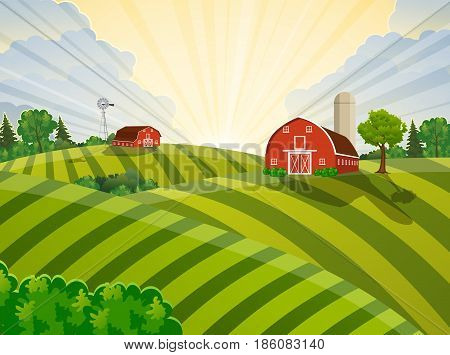 Cartoon farm field green seeding field, red barn on a green farmers field, large field farming striped, Farm flat landscape. Organic food concept for any design