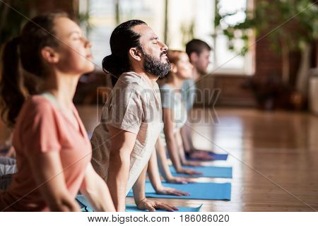 fitness, yoga and healthy lifestyle concept - group of people doing upward-facing dog pose on mats at studio