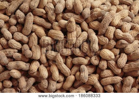 Close up shot of fresh and nature peanut with ground earth dirty un clean
