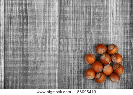 Purified hazelnut nuts lie on a gray wooden background. There is room for text