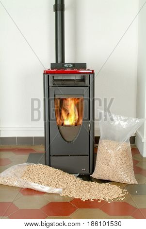 Modern Domestic Pellet Stove With A Burning Flame