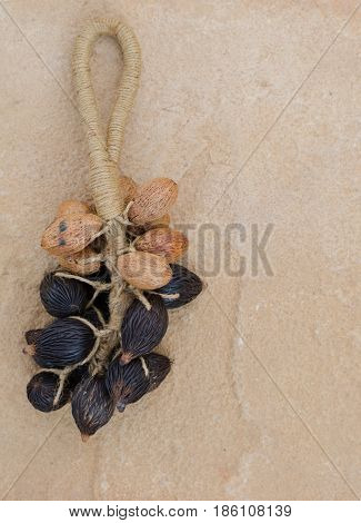 Bunch of Thai olive seed on brown stone background