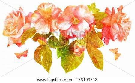 A bouquet of tender pink roses and camellias, flowers and buds, with green leaves and butterflies, hand painted in the style of vintage botanical art, isolated on white, golden toned