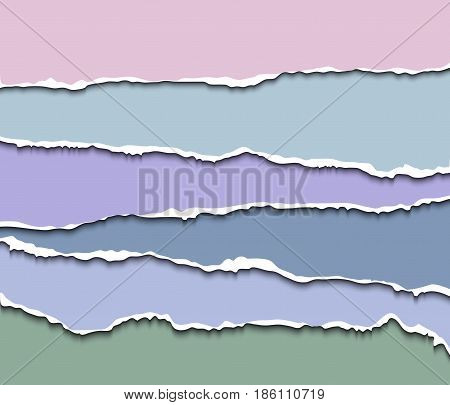 Paper dividers set, realistic vector paper. Ripped edges paper for web sites, infographics
