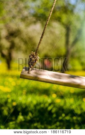 Swing hanged on a tree Wooden swing in the gardenwooden swing with green grass background in the parkempty swing