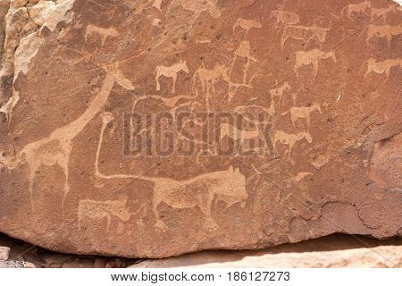 Bushman Engravings In The Granite Rock, Twyfelfontein Unesco World Heritage Site, Kunene Region, Dam