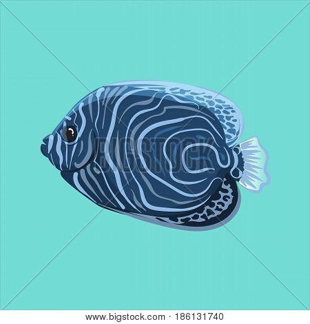 Vector Surgeonfish