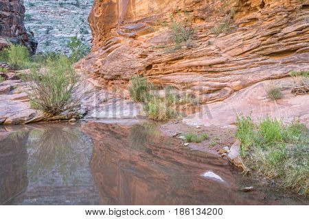 water pool at a bottom of sandstone  Hunter Canyon near Moab, Utah