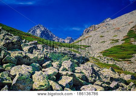 High Tatra Mountains landscape with stones