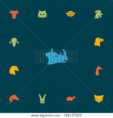 Set Of 13 Brute Icons Set.Collection Of Camelopard, Rhinoceros, Lamb And Other Elements.