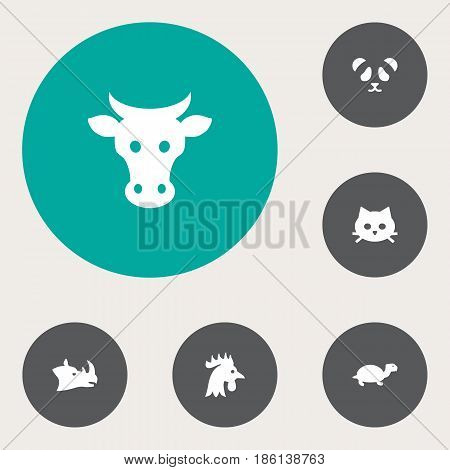 Set Of 6 Alive Icons Set.Collection Of Rooster, Kine, Bear And Other Elements.