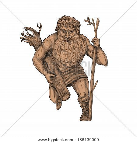 Tattoo style illustration of a leshy or Leshiye a tutelary spirit of the forests in Russian or Slavic folklore holding tree trunk and staff viewed from front on isolated white background.
