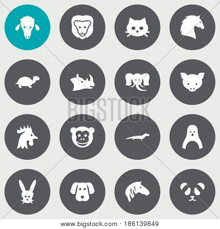 Set Of 16 Brute Icons Set.Collection Of Ape, Bunny, Rhinoceros And Other Elements.