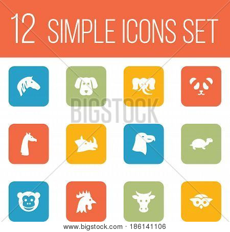 Set Of 12 Alive Icons Set.Collection Of Kine, Horse, Camelopard And Other Elements.