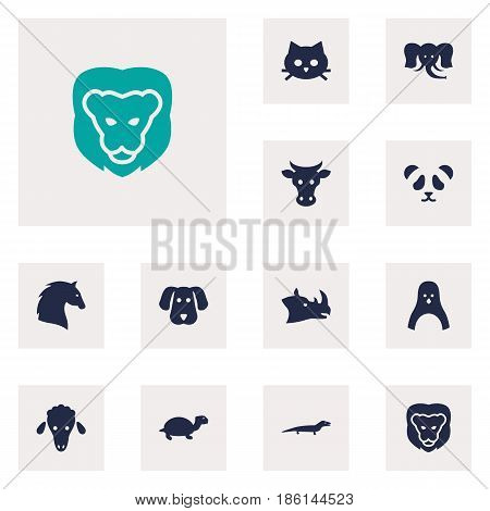 Set Of 12 Brute Icons Set.Collection Of Gecko, Wildcat, Bear And Other Elements.