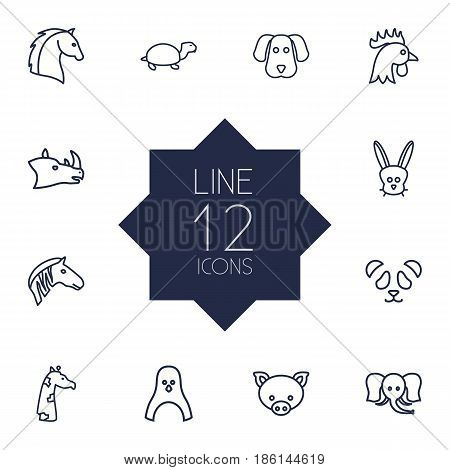 Set Of 12 Brute Outline Icons Set.Collection Of Horse, Feline Bear, Mammal And Other Elements.