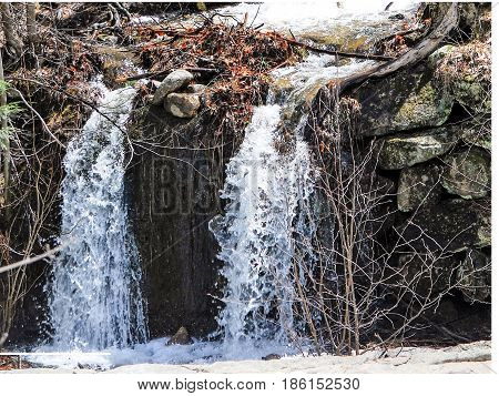 Late winter brook splits into two separate small waterfalls