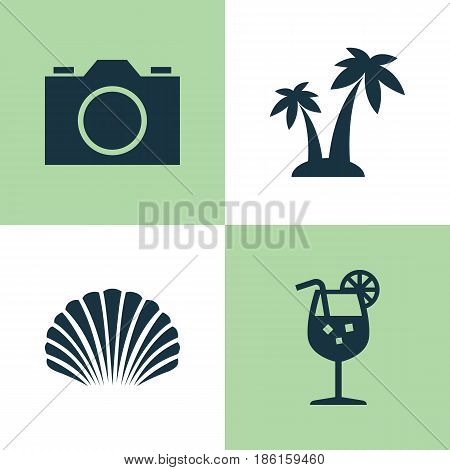 Season Icons Set. Collection Of Video, Trees, Conch And Other Elements. Also Includes Symbols Such As Cocos, Palms, Trees.