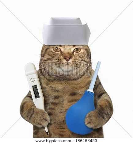 The cat doctor is holding a thermometer and a enema. He wears a white medical cap. White background.