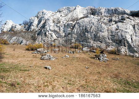 spring NPR Devin - Kotel - Souteska in Palava mountains in South Moravia with meadow flowering cornus mas plants limestone rocks and clear sky