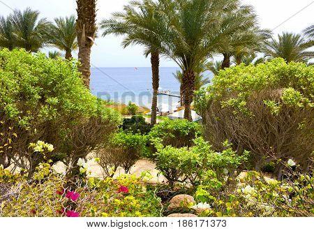 Sharm El Sheikh, Egypt - April 11, 2017: The beach and park area at Hotel Four Seasons Resort Sharm El Sheikh