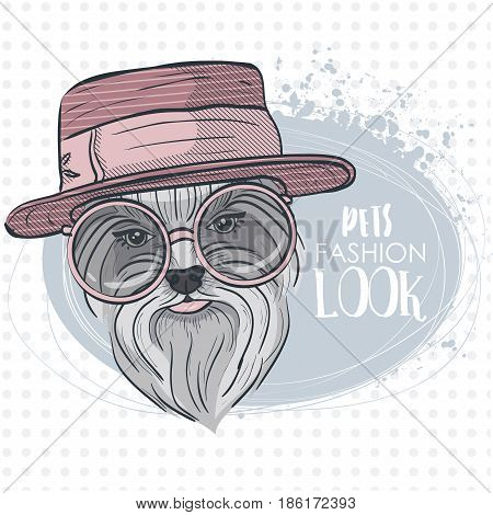 Vector pets fashion look, elegant dog woman's face with hat and circle sunglasses